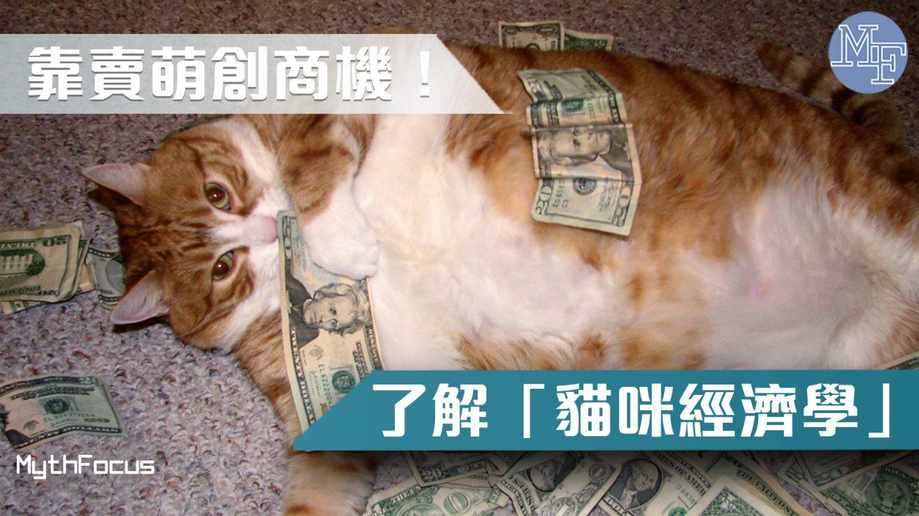 【超強魅力】比人更吸金! 「貓咪經濟學」靠賣萌創商機