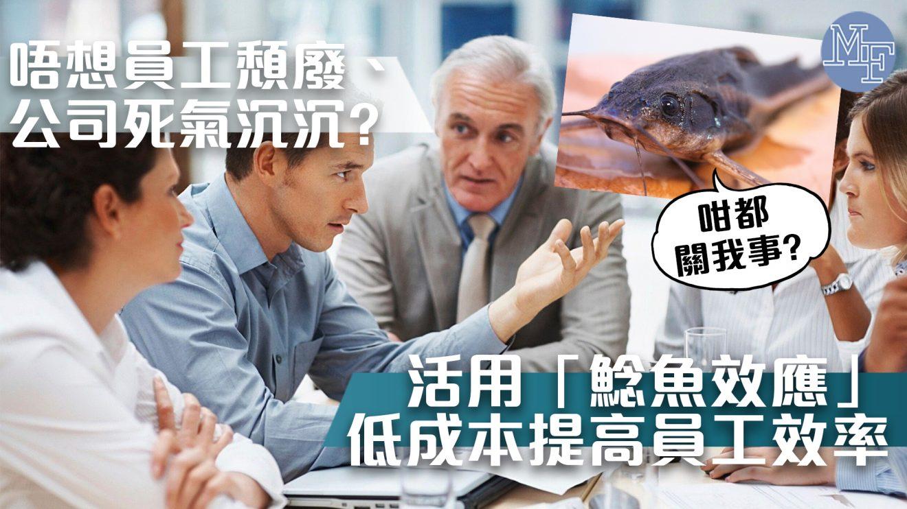 【買魚學經濟】唔想員工頹廢、公司死氣沉沉﹖學識鯰魚效應用低成本解決人事問題!